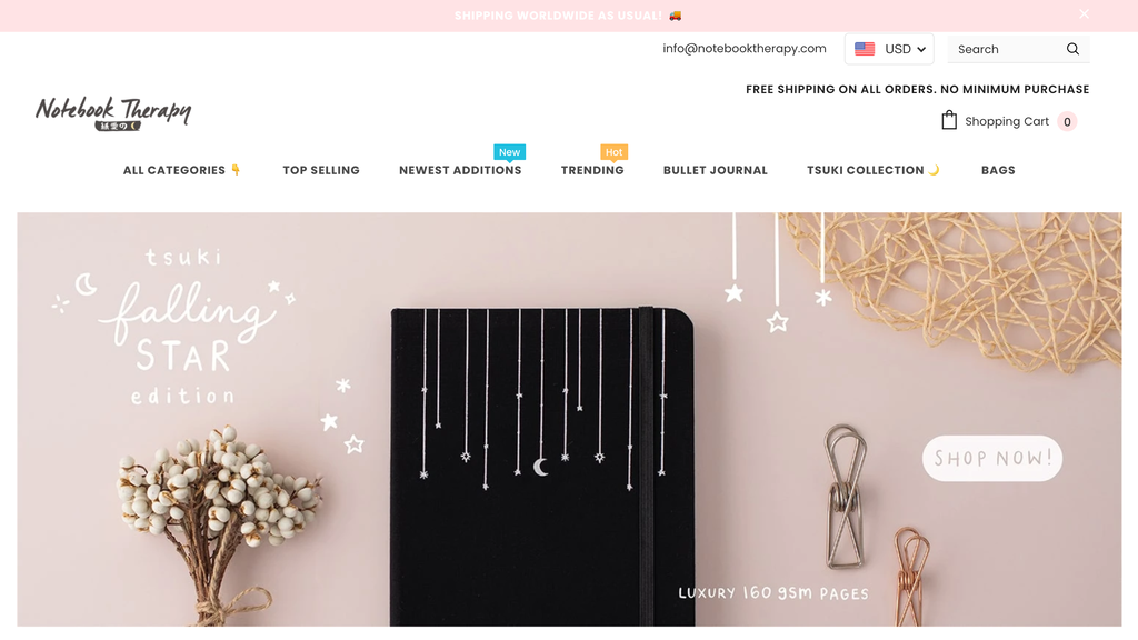 Homepage of Notebook Therapy, a Dropshipping Small Business